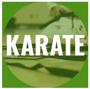 karate-teaser